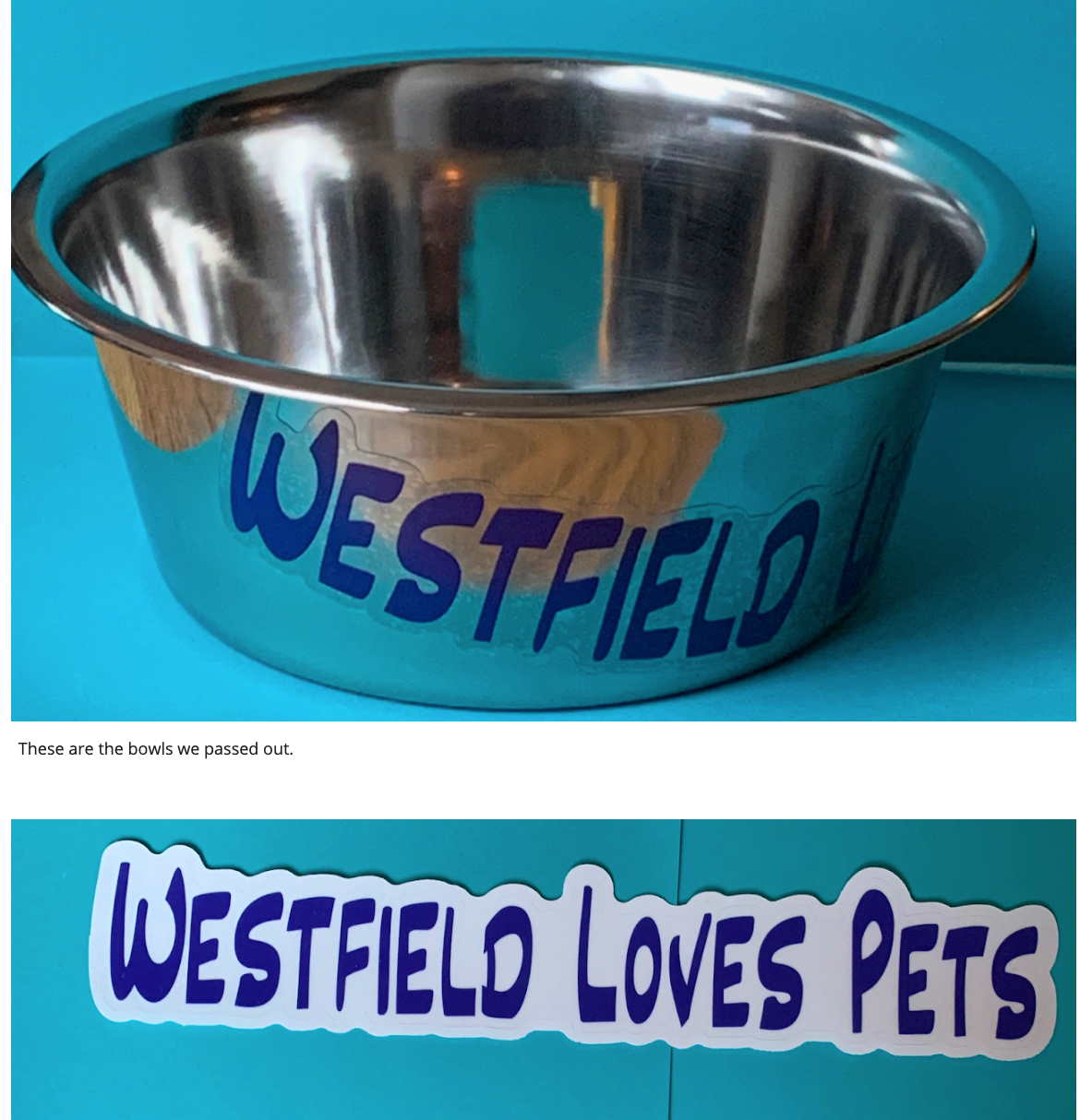 Wilson Elementary School Girl Scout Troop 41106 provided pet water bowls to downtown Westfield retailers.