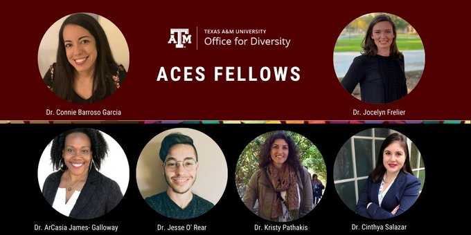 ACES Fellows 2020 Graphic