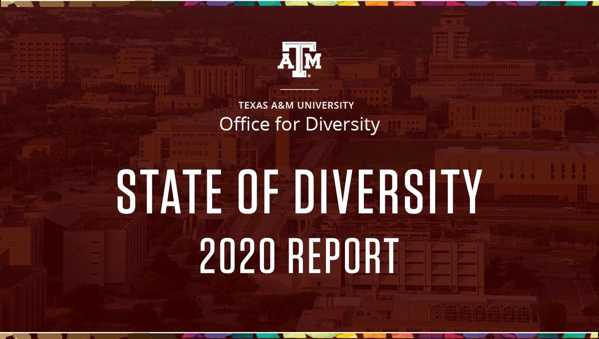 State of Diversity graphic