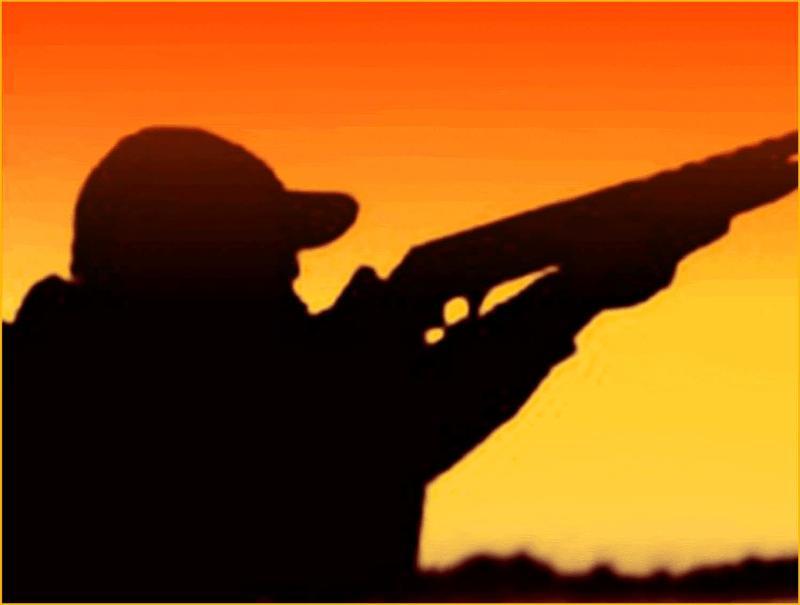 Clay Shooter