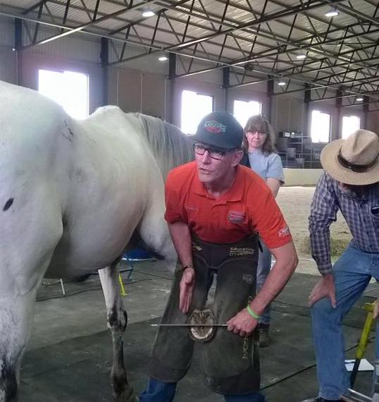 Business & Industrial Livestock Supplies Hospitable 6 Farrier Hoof Knives Equine Veterinary Horse Knife