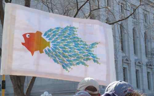 Union Fish