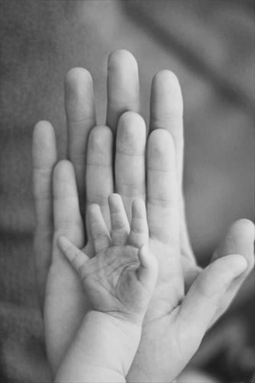 A-Safe-Haven-for-Newborns-hands