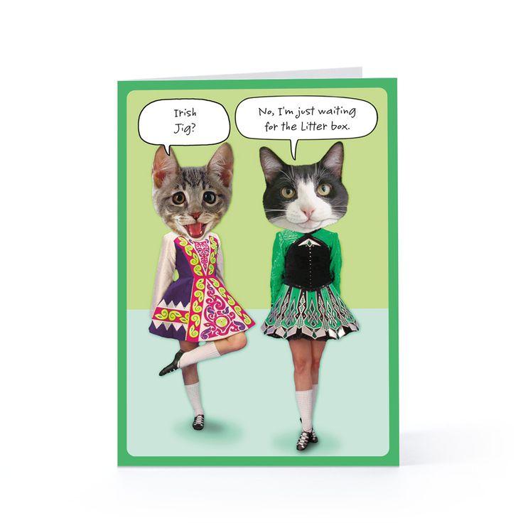St cat tricks day m4hsunfo