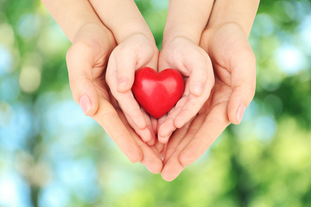 adult hands are holding a child's hands, which are holding a heart