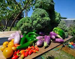 food fruit vegetables