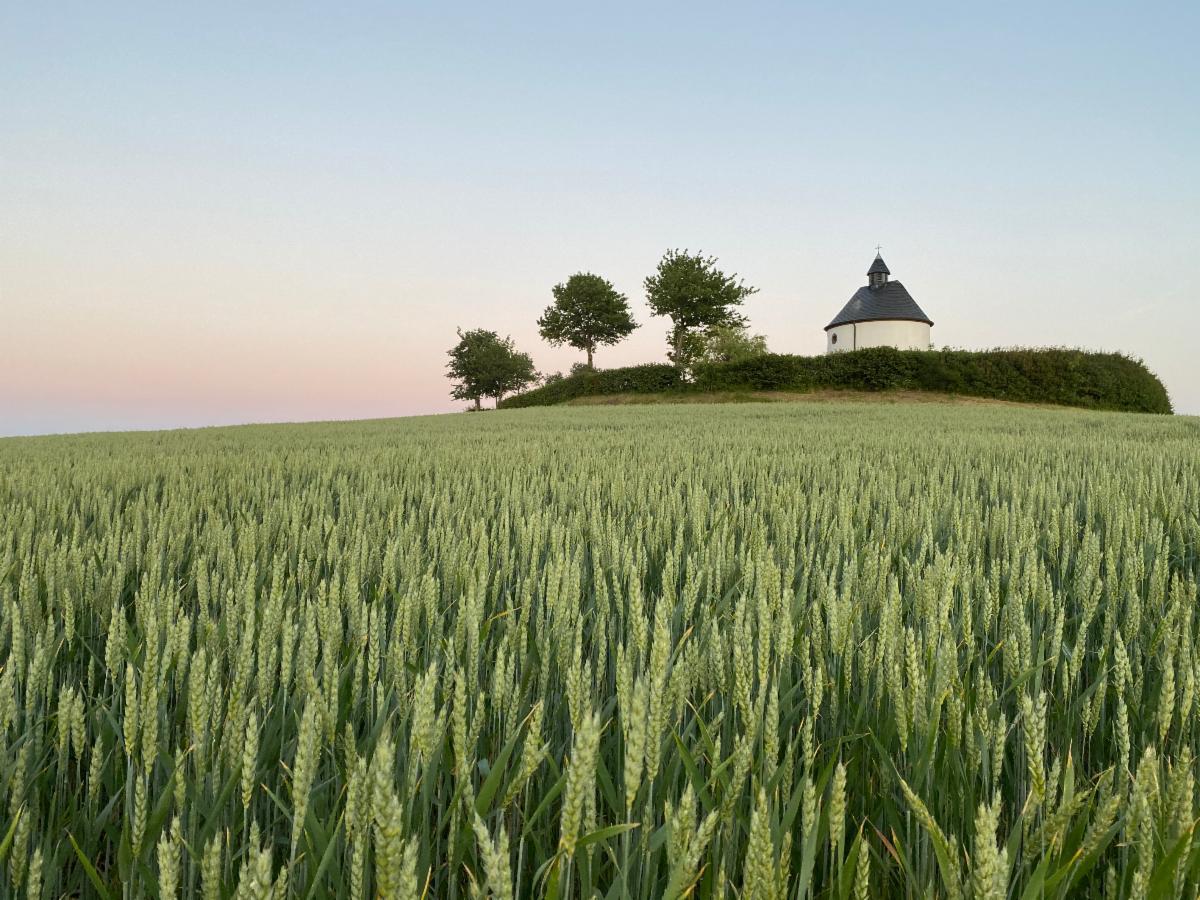 Rye field with chapel - Jeroen van Veen