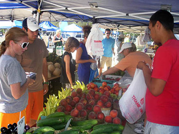 Fresh and Local Vendors at the FRFM!