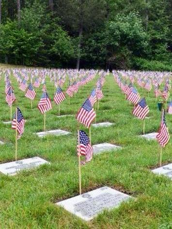 Flags at Tahoma National Cemetery