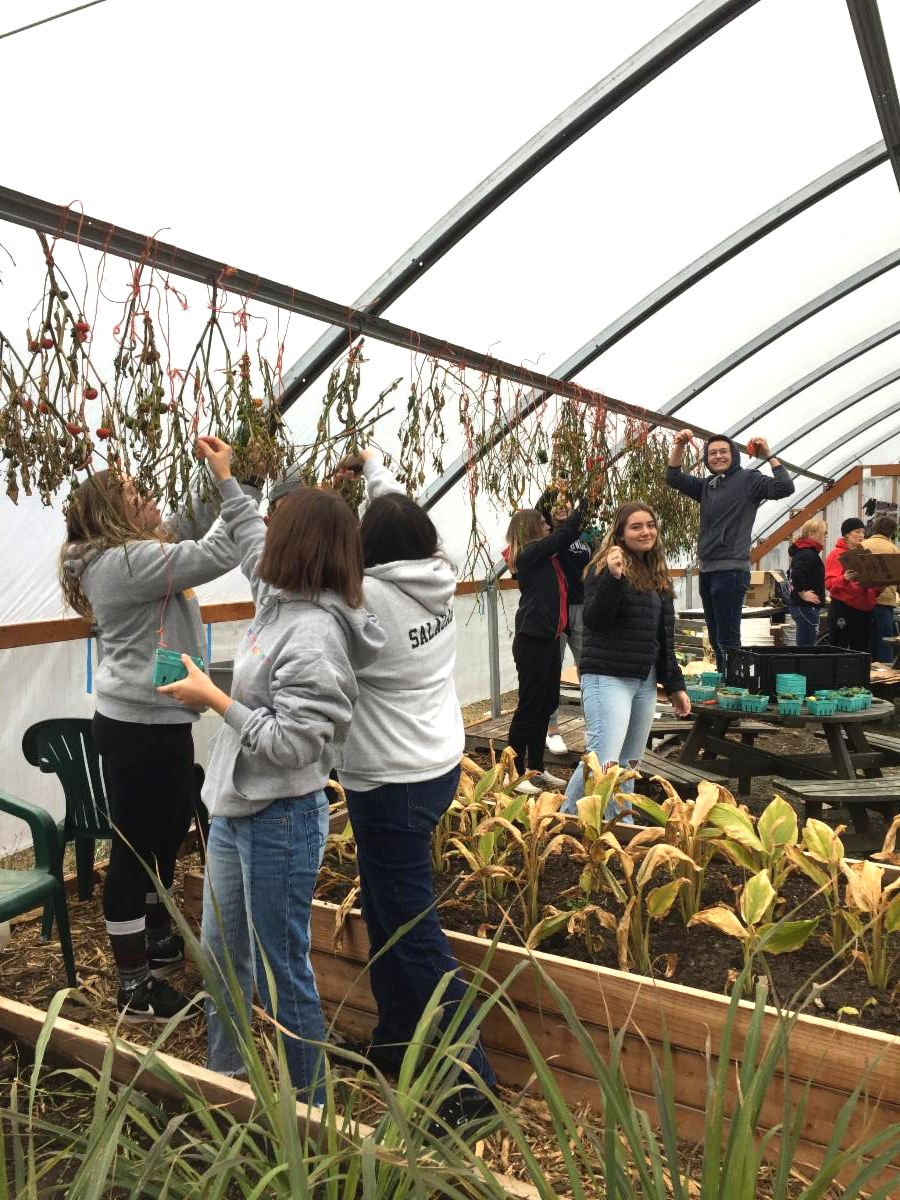 THS students work in the greenhouse at Elk Run Farm.