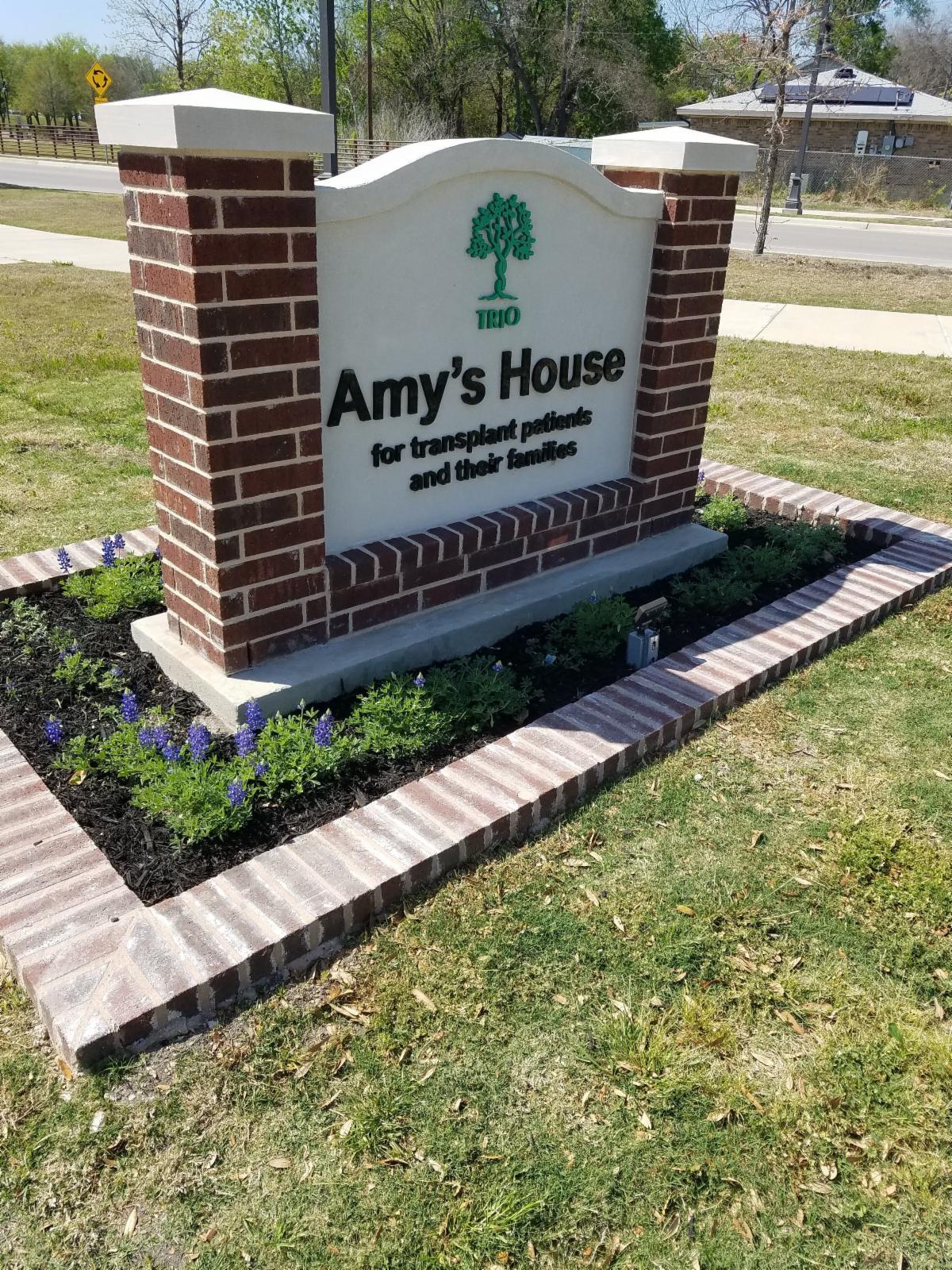 Amys House