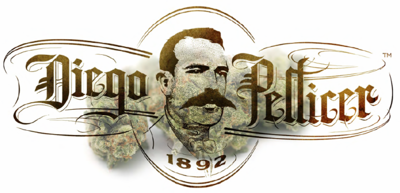 Diego Pellicer Washington Will Open Flagship Store in Q4 of 2016