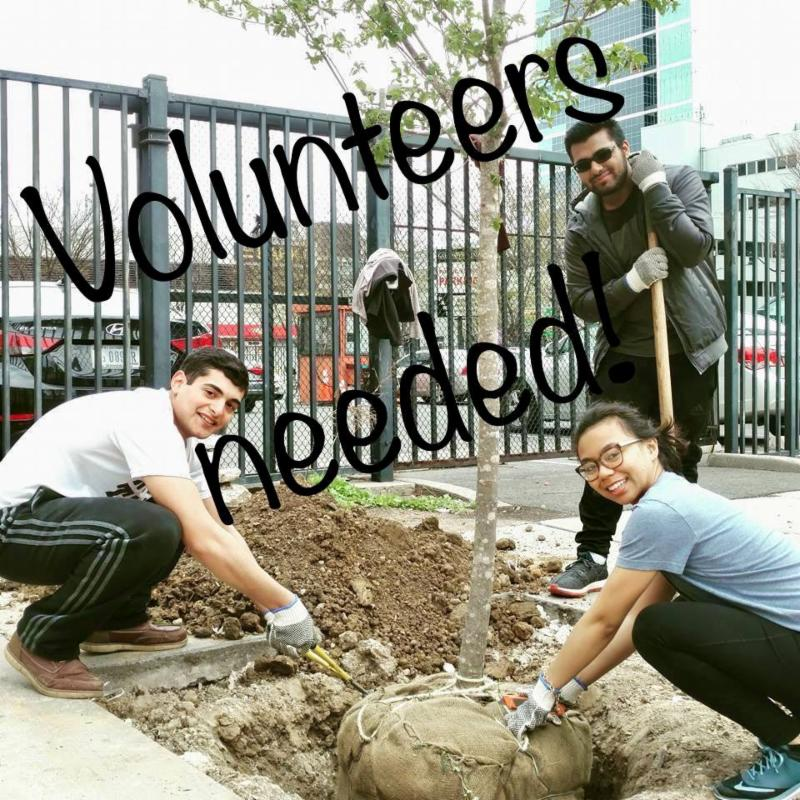 The NJ Tree Foundation Is Looking For A Few Helping Hands Several Planting Events This Season School Groups Families And Individuals Welcome