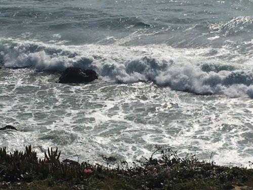 Ocean waves below beach grass.