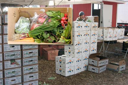 Harvest Box