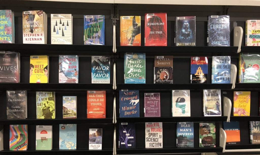 Photo of new fiction books on shelves in the Library