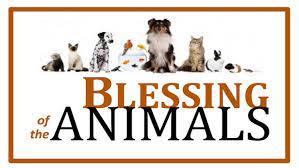 blessings of the animals.jpg