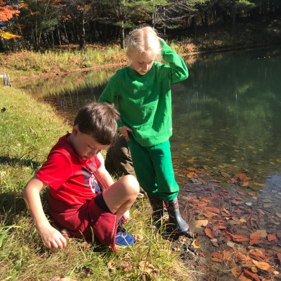 Bobcats explore the Town Pond during Outdoor Education