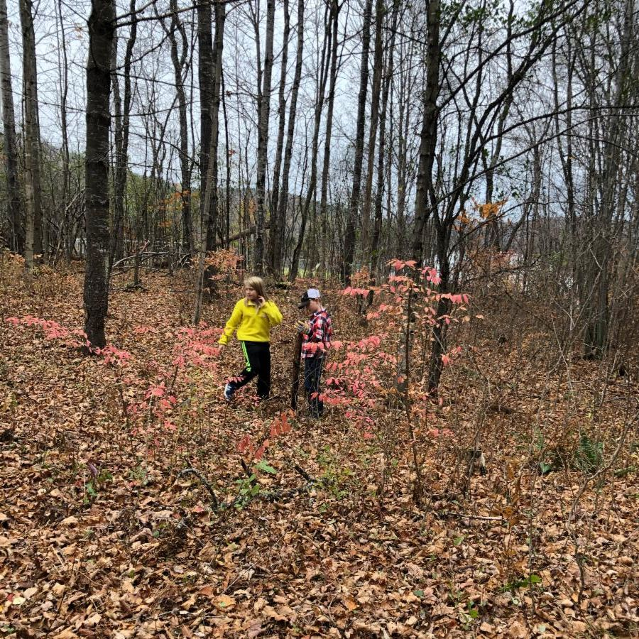 Third and fourth spent time in their Forest Classroom