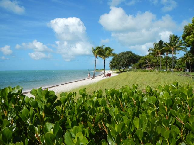 Coastline of Florida
