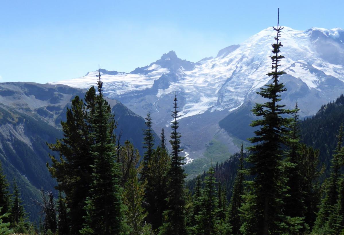 View of Mt. Ranier