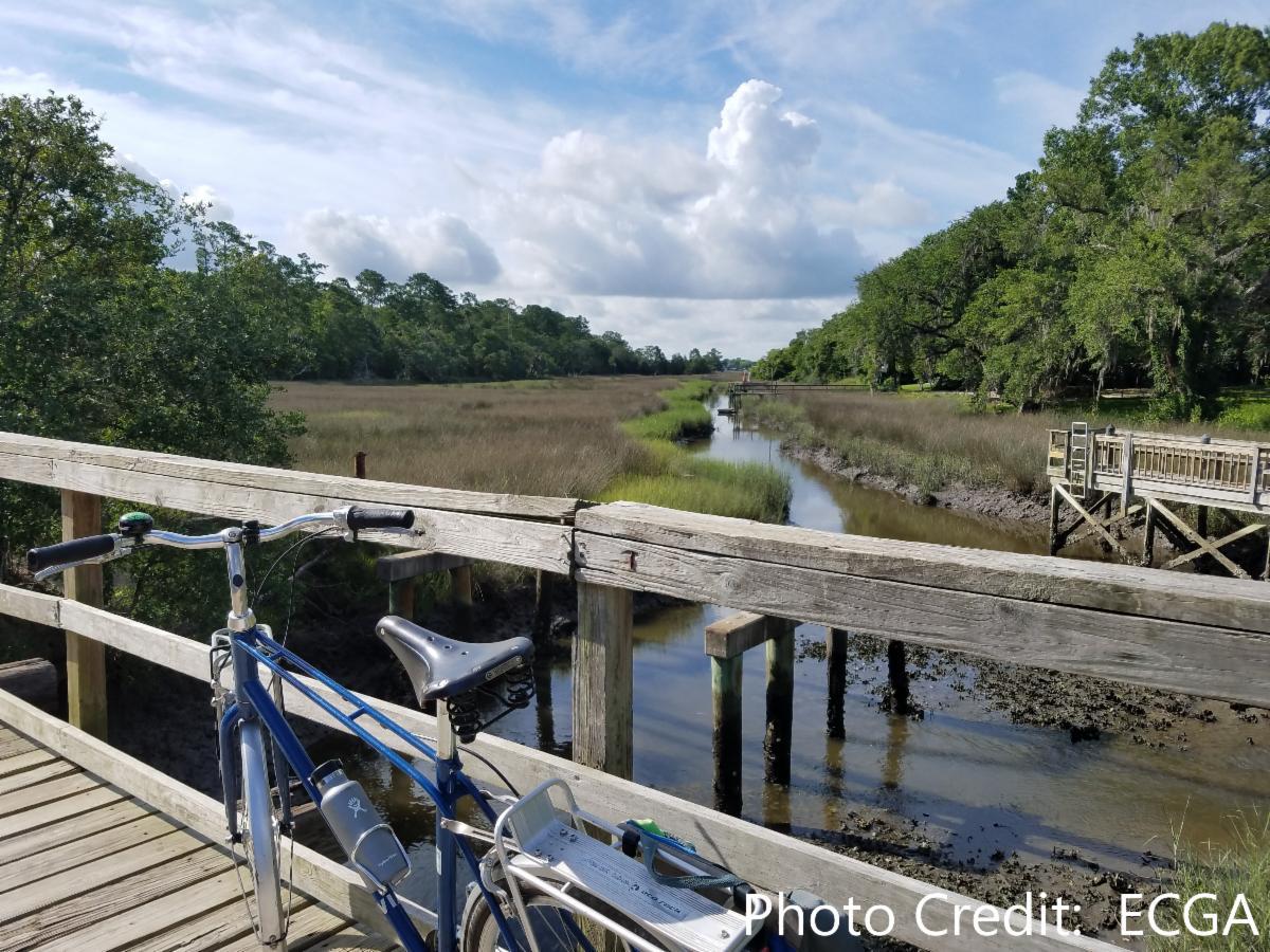 Bike resting along a pier at a marshland.