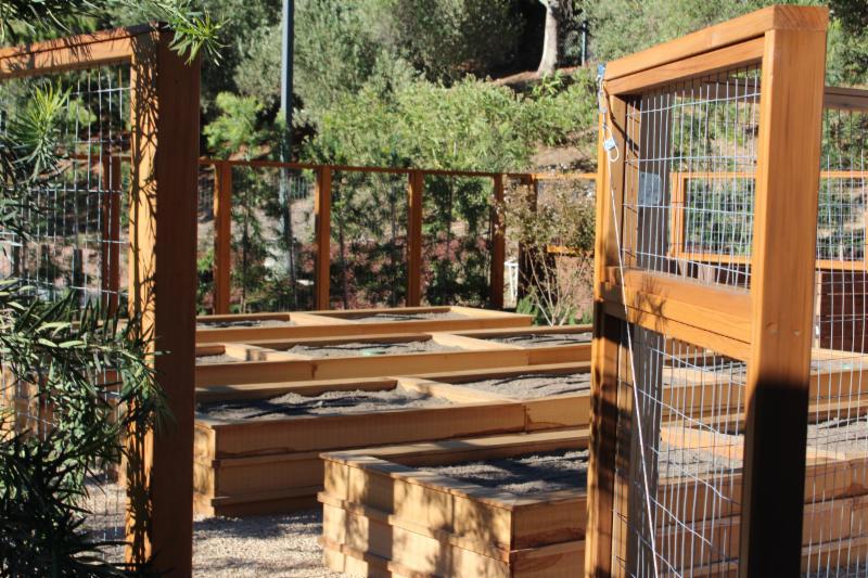 New Garden 2016