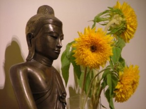 Pranic Healing Study Group