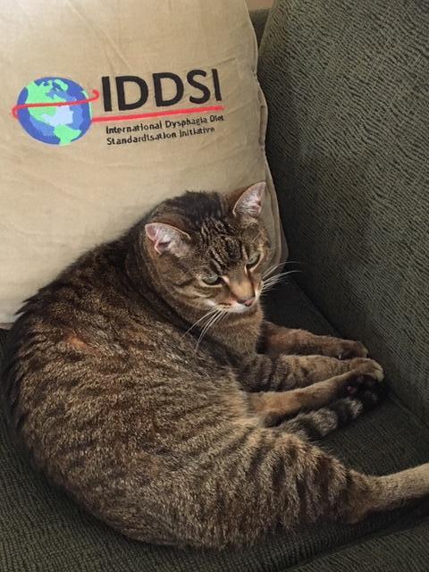 IDDSI Kitty