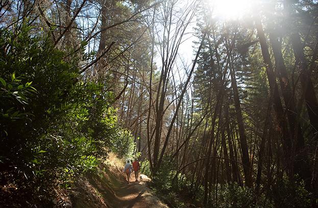Mark West Creek Regional Park couple hiking with dog
