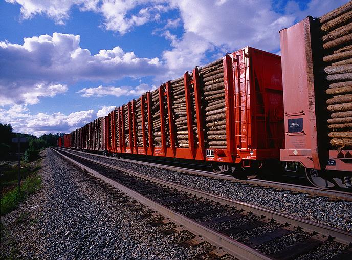 log_freight_train.jpg