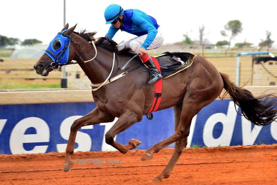 Ramkat wins for Spies Racing 17 Feb 2020