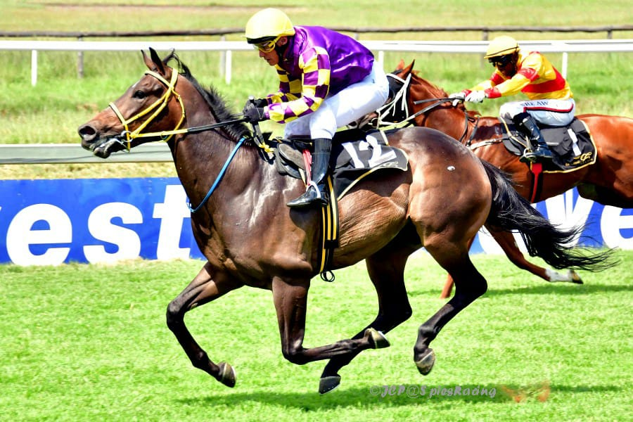 Roger the Dodger wins at the Vaal