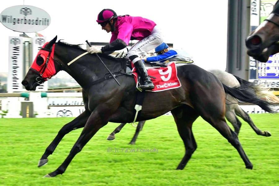 Gallic Princess wins For Spies Racing 12 Feb 2020