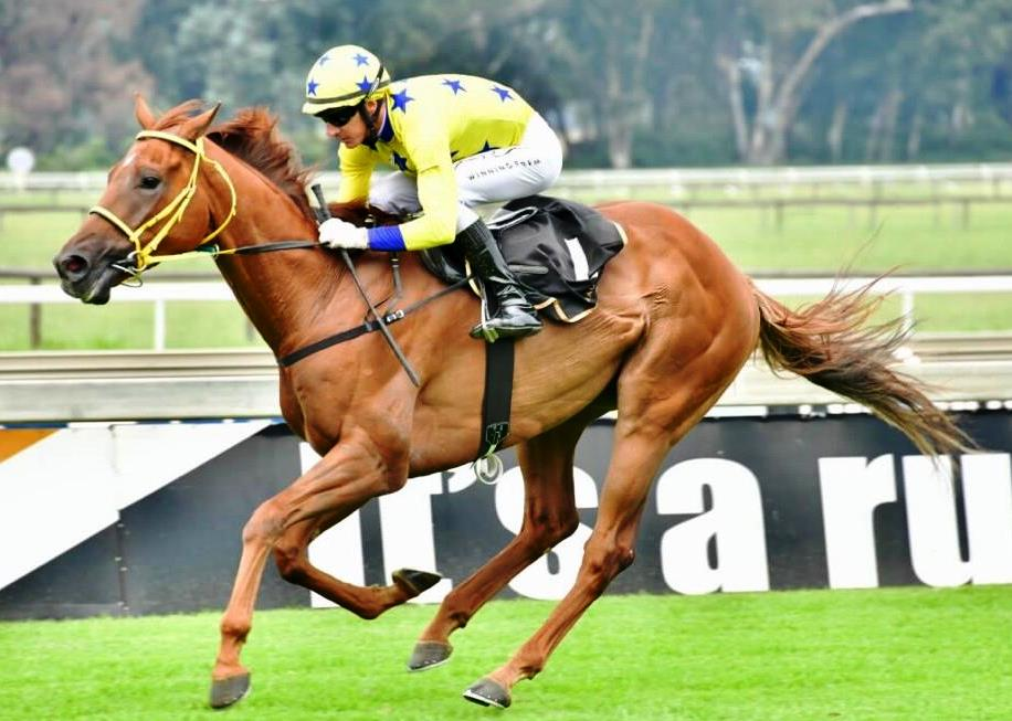 Imperial Ruby wins for Spies Racing