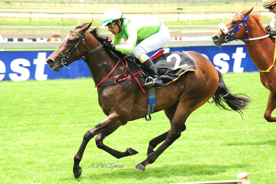 Miss Boomerang wins for Spies Racing