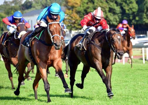Singforara wins at Turffontein
