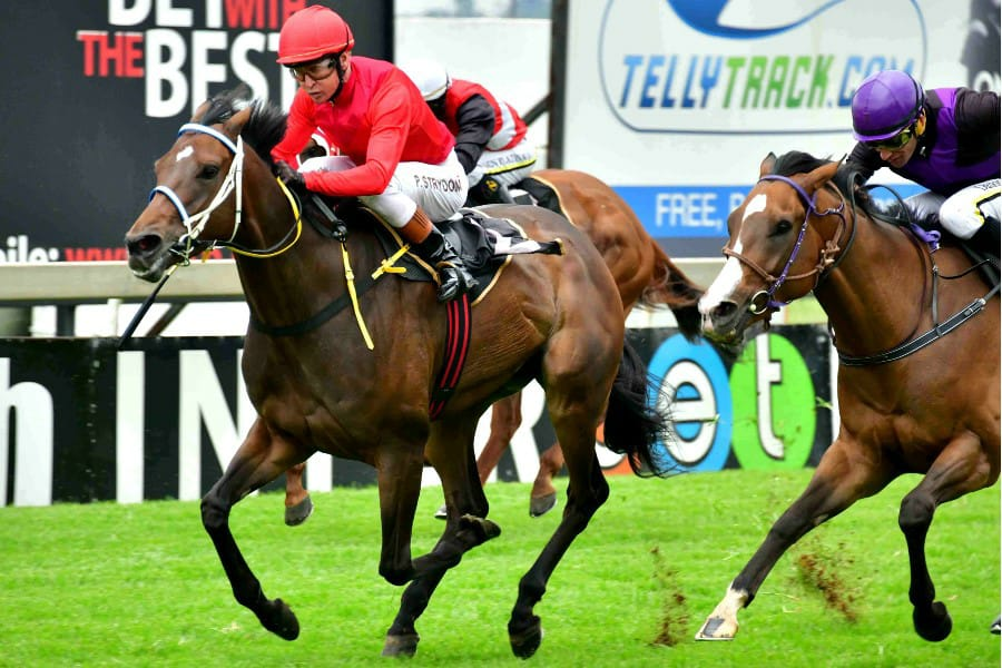 All Of Me wins 29-Feb-2020 for Spies Racing at the Vaal