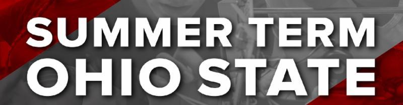 Summer Term Logo
