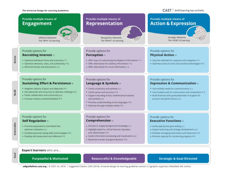 Free UDL Lesson Plan Guidelines