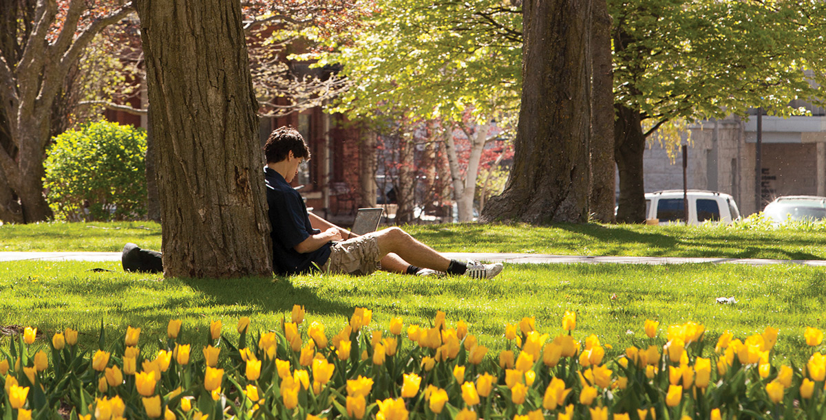 Student sitting outside studying