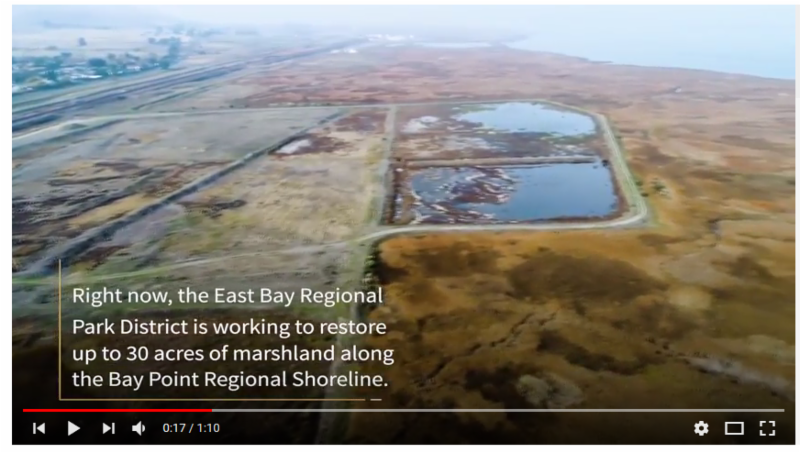 Bay Point Video Screenshot