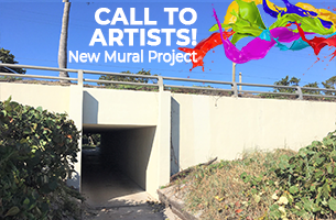 spanish river park tunnel, call to artists! new mural project