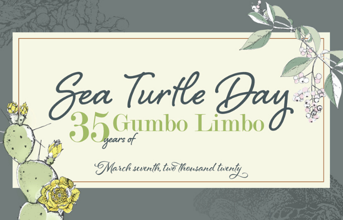 Sea Turtle Day at Gumbo Limbo. March 7, 2020