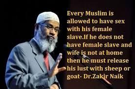 Sex-Sins-With-Slaves-Muslim-Scholar
