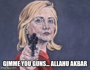 Hillary Clinton Gun Control