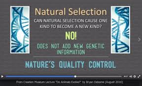 Natural-Slection-No-New-Genetic-Information-No-New-Kinds-Creation-Truth