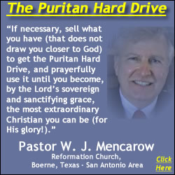 250x250-Faded Mencarow Puritan Hard Drive Review Excerpt Quote 2 jpg