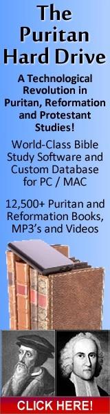 Puritan-Hard-Drive-160x600-A.jpg