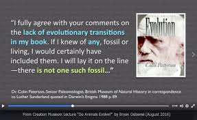 Evolution-No-Transitional-Fossils-Creation-Truth